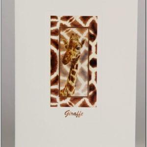 SG - Giraffe