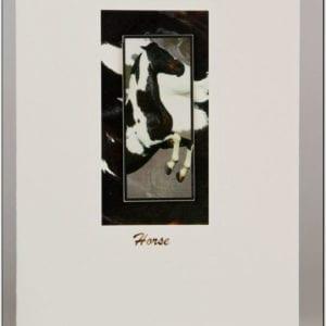 SH1 - Horse (Black)