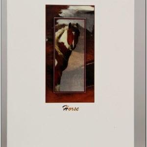 SH3 - Horse (Brown)