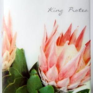 TKP - King Protea