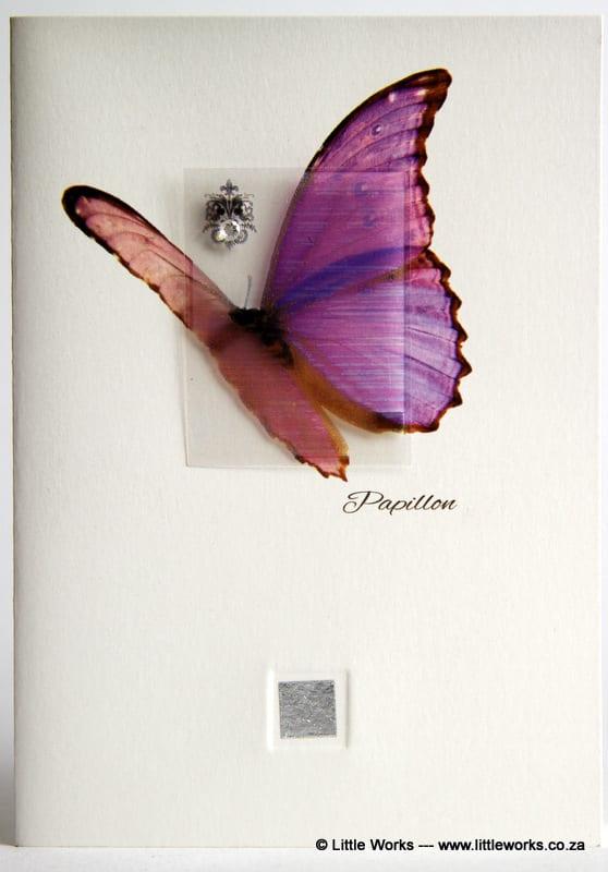 ZBF5 - Papillon Butterfly