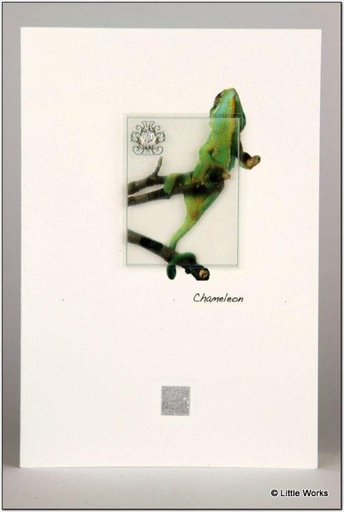 ZC - Chameleon