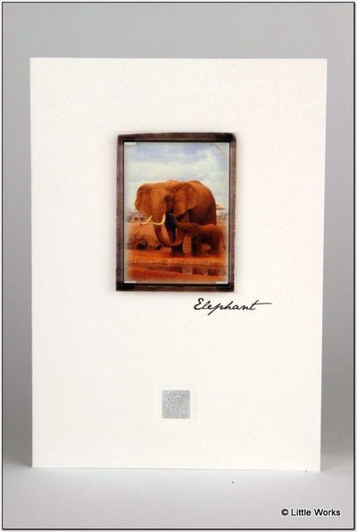 ZE5 - Elephant