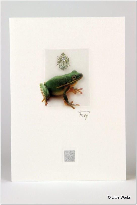 ZFR - Frog