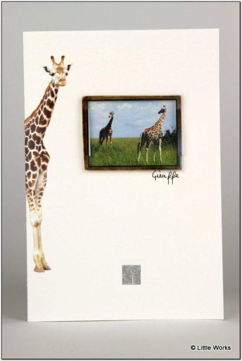 ZG - Giraffe