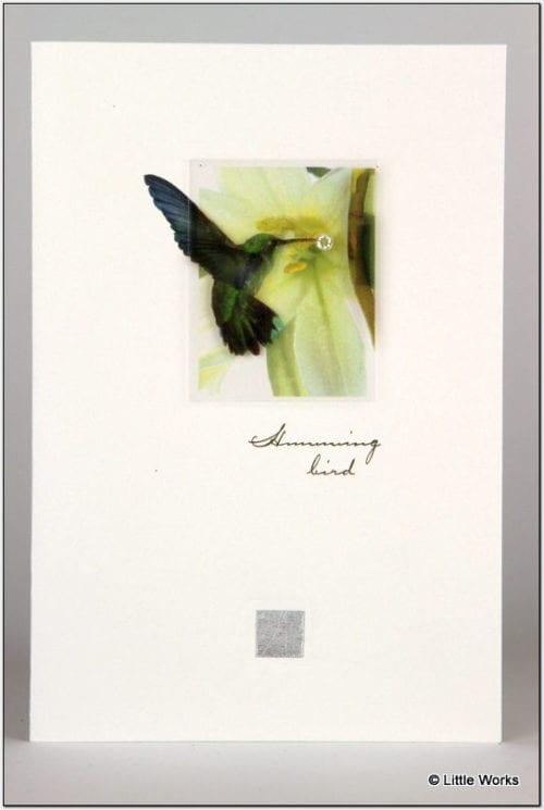 ZHB - Humming Bird