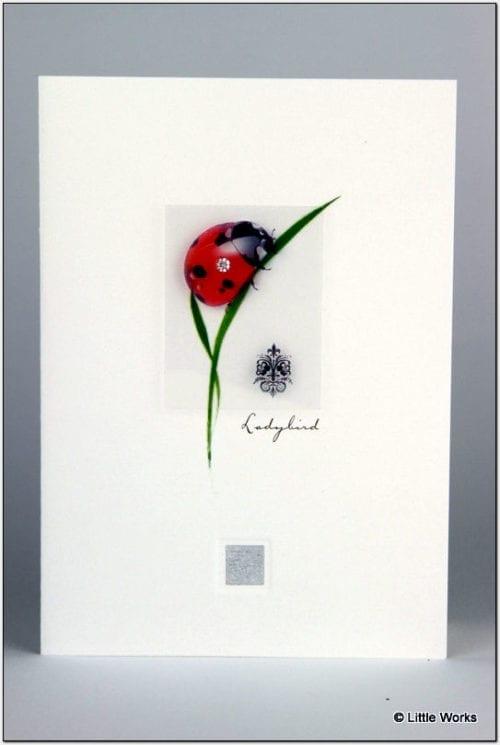 ZLDB - Ladybird
