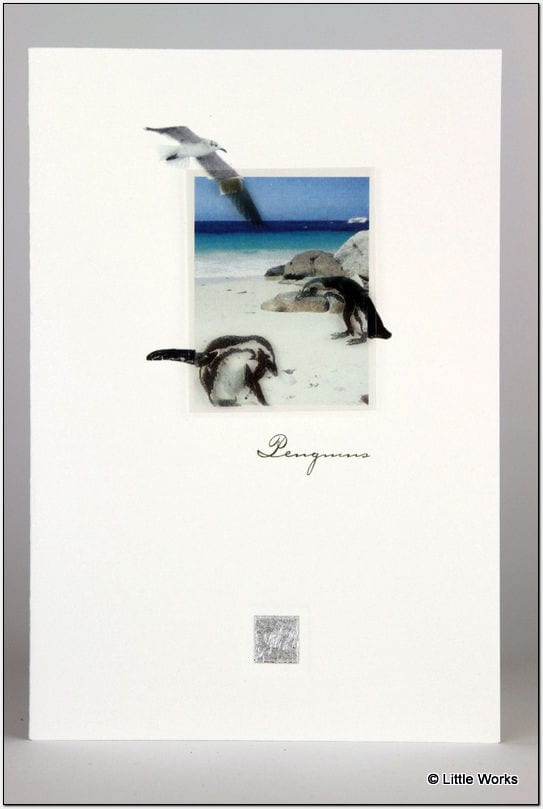 ZPEN - Penguins