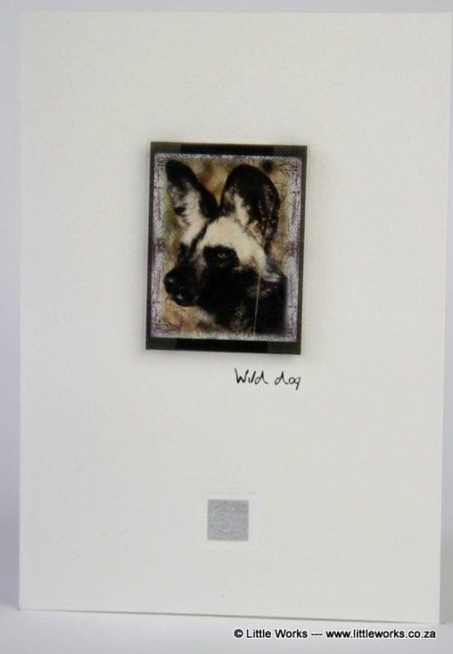 ZWD - Wild Dog