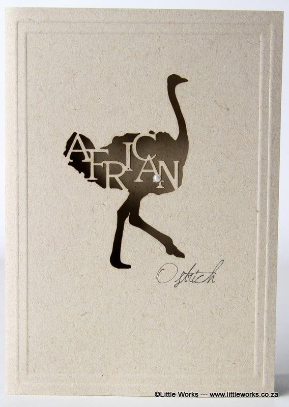 LCAOD - African Ostrich - Desert Storm