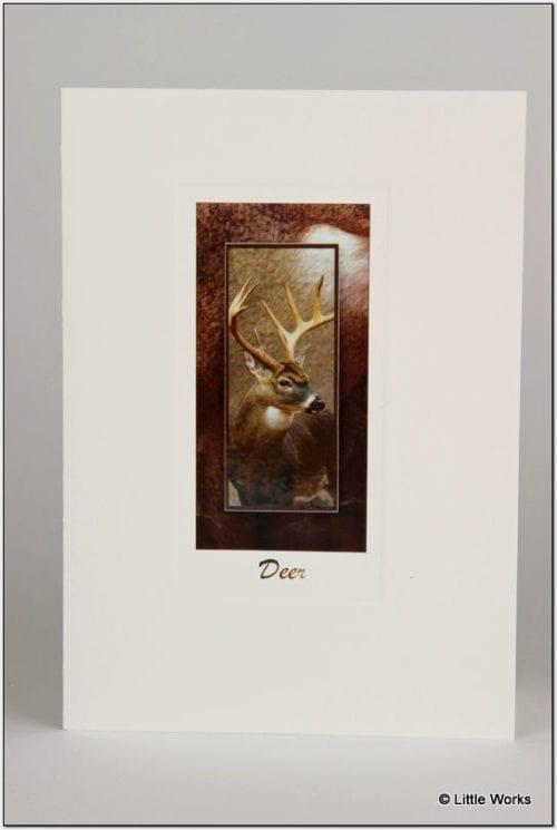 SDEER - Deer