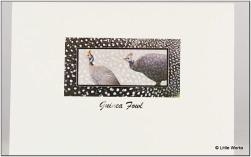 SGF - Guinea Fowl