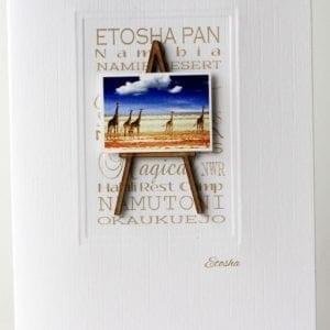 MENE2 - Ethosha Pan Giraffe