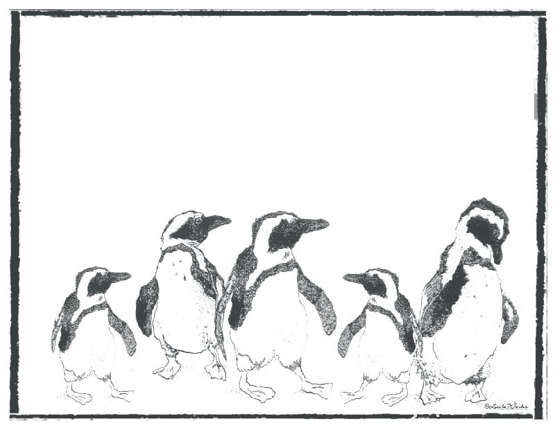 PM10 - Penguin Family - A Pack of 12 Place Mats