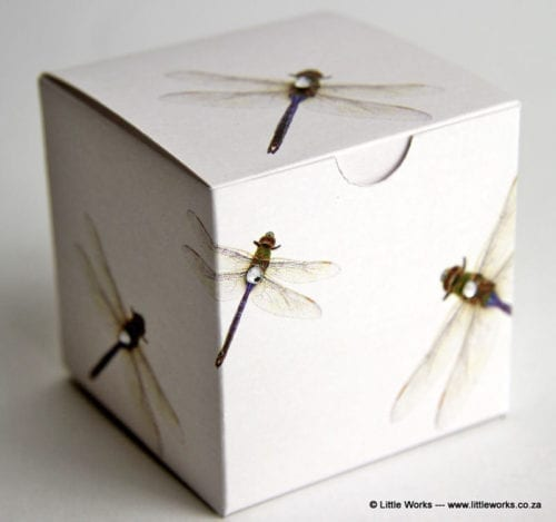 BOXZ1 - Dragon Fly Zirconia Gift Box (Pack of 4 boxes)