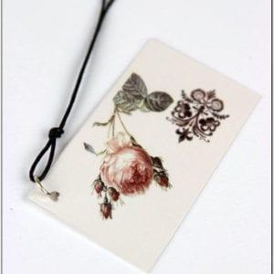 ZT7 - Wild Rose