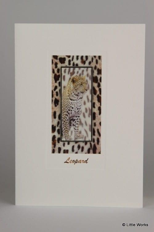 SLP - Leopard